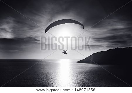 Sky diver flies at sunset over the bay. Black and white photo. Phuket island, Thailand