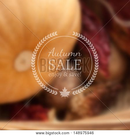 Autumn Sale Vector Banner on Vector Photorealistic Colorful Blur Background