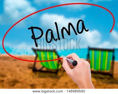 Man Hand Writing Palma  With Black Marker On Visual Screen