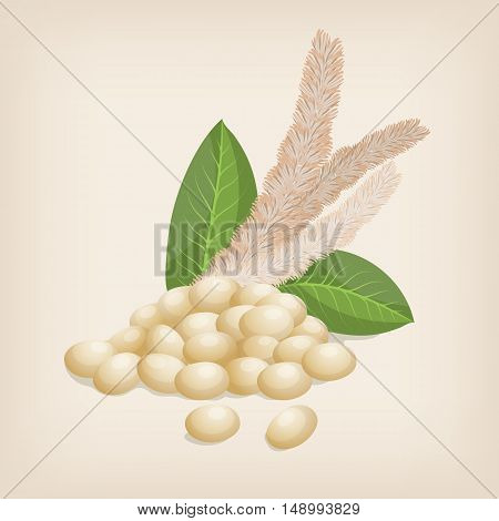 Grain amaranth flowers and leaves. Vector illustration.