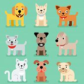 Puppy and kitten vector pet flat icons. Muzzle of cat and dog, illustration set of mammal best friend dog and cat poster