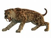 Saber-Tooth Cat Angry 3D Illustration - Saber-Tooth Tiger was an extinct large carnivore that lived worldwide during the Eocene to Pleistocene Eras. poster