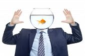 Man with a water bowl with golden fish instead of a head poster
