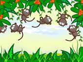 Vector cartoon background. Jungle. The frame of the plant. The nice monkeys hung on trees. African animals. poster