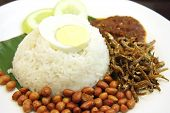 Nasi lemak traditional malaysian spicy rice dish poster