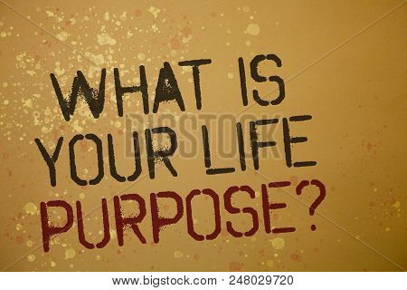 Word Writing Text What Is Your Life Purpose Question. Business Concept For Personal Determination Ai