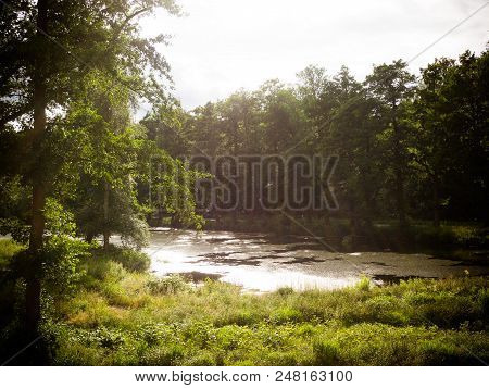 Sunny Happy Summer Day Or Evening Concept.still The Lake Is Resting, Fishing Evening Summer Evening