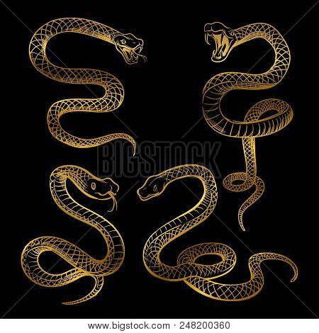 Golden Snake Set. Hand Drawn Snakes Isolated On Black Background. Vector Illustration