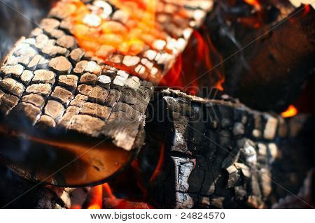 Hot red burning firewood of campfire in sharp focus poster
