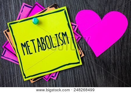 Handwriting text writing Metabolism. Concept meaning Chemical processes in body to produce energy food processing Border sticky remember cards love heart pinned dark woody background poster