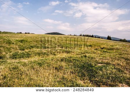 Mountain Meadow With Trees And Hills On The Background And Blue Sky With Clouds - Svorad Above Prosi