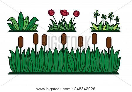 Green Grass And Flower Plants Or Reed For Decorative Verdure Vector Flat Cartoon Floral Garden