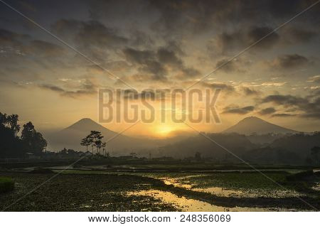Two Mountain Sindoro And Sumbing, Into Rice Fields In Wonosobo, Java, Indonesia