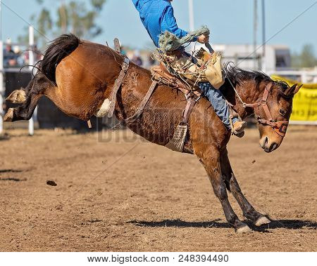 A Cowboy Riding A Bucking Bronco Horse In A Competition At A Country Rodeo