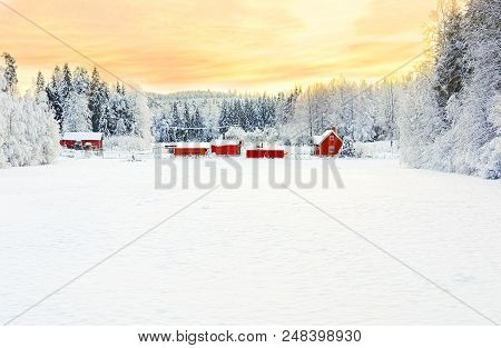 Wintery Scene On A Woodland Homestead With Stark Contrast Between The White Snow, Orange Sunset, And