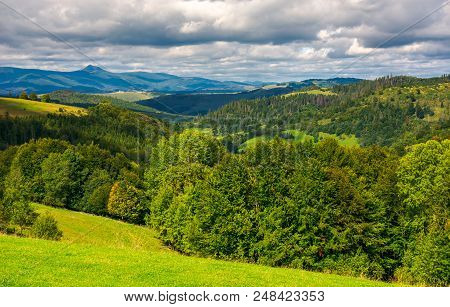 Forested Hills Of Carpathian Mountains. Wonderful Landscape In Early Autumn On A Cloudy Day. Pikui M
