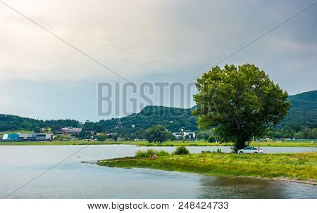 Tree On The Shore Of Zemplinska Sirava In Summer. Beautiful And Calm Scenery Of One Of The Largest S