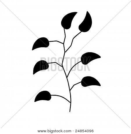 Branch With Leaves.