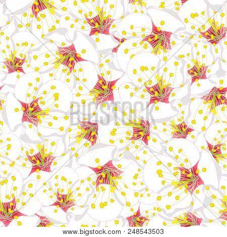 White Plum Blossom Flower Seamless Background. Vector Illustration.