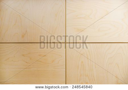 Abstract background of parallel pieces of plywood. Wood background. poster