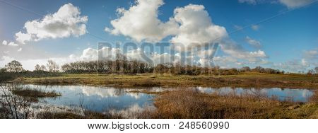 Dune lake in the inland dunes landscape - Panorama. Moist dunes valley panorama. Dune lake in the inland dunes under a blue, white clouded sky at Castricum, the Netherlands - panorama. The white Cumulus humilis clouds reflect in the silent water.