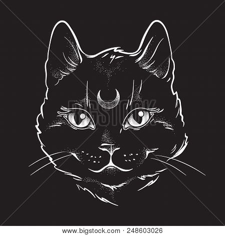 Cute Black Cat With Moon On His Forehead Line Art And Dot Work. Wiccan Familiar Spirit, Halloween Or