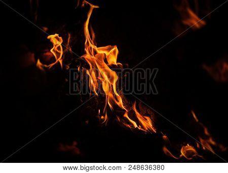 Flames Of Bonfire At Night
