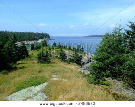 Seascape Moshers Island