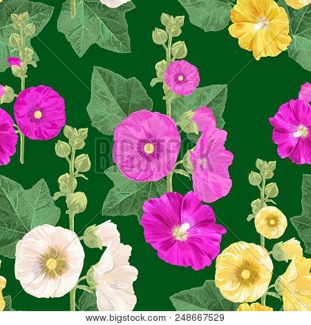 Malva Flower Seamless Pattern. Summer Floral Background With Flowers. Watercolor Blooming Design For
