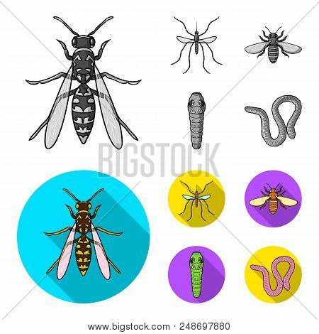 Worm, Centipede, Wasp, Bee, Hornet .insects Set Collection Icons In Monochrome, Flat Style Vector Sy