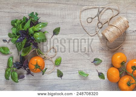 Parsley And Basil Bunch Of Bouquets, Branch Yellow Tomatoes, Scissors And Rope Cord On Light Wooden