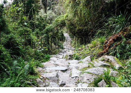Stone Steps Of The Inca Trail To Machu Picchu In The Wildness. Beautiful Wallpaper.