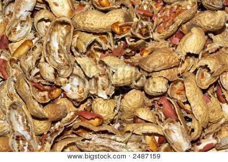 Smashed Peanut Shells