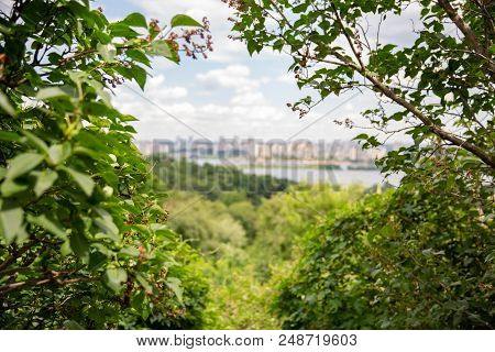 Wonderful Nature By The Lake. View Of The Lake From The Forest. Vacation With The Family, Where The