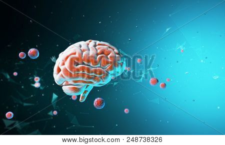 3d Model Of The Human Brain. Body. Psychology And Thinking. Technological Abstraction 3d Rendering.