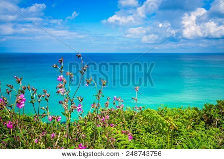 Landscape Of The Green Rural Cornish Hillside Meadow And The Turquoise Sea, Cornwall, England, Uk