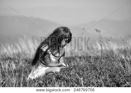 Girl On The Nature. Small Pretty Brunette Girl In White Lace Summer Dress Sitting In Mountain Valley