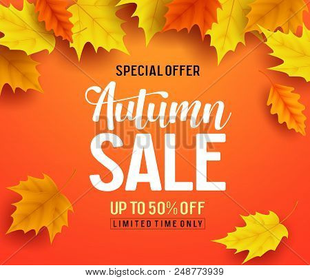 Autumn Sale Vector Banner Background With Fall Leaves Elements, Autumn Typography And Discount Text
