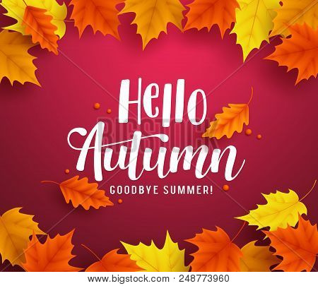 Hello Autumn Vector Background Template With Autumn Typography And Maple Leaves In Red Background Fo