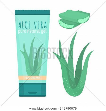 Aloe Vera Pure Natural Gel. Cosmetic Produst For Skincare And Slices Of Fresh Plant.