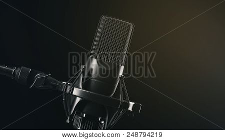 Black Metal Studio Condenser Microphone.