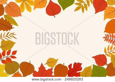 Fallen Gold And Red Autumn Forest Leaves. October Nature Leaf Border Vector Abstract Background. Lea