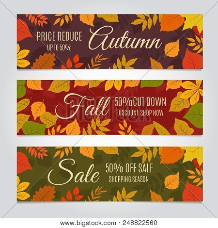 Fall Sale Banners. Autumn Offer And Season Discounts Advertising Background With Yellow Leaves. Vect