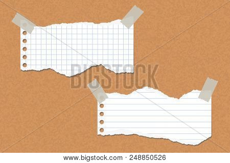 Two Torn Lined And Square Papers Attached With Adhesive Tape To A Cork Board - Vector