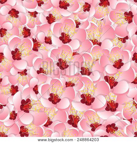 Momo Peach Flower Blossom Seamless Background. Vector Illustration.