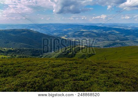 The Hill Is Densely Overgrown With Blueberries, Overlooking The Other Hills Covered By Trees And A S