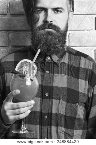 Man holds alcohol cocktail on brick wall background. Masculinity drink concept. Hipster enjoy strong drink or cocktail. Barman with beard and strict face holds glass with chili pepper cocktail. poster