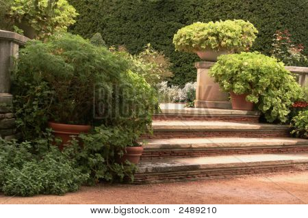 English Garden With Steps