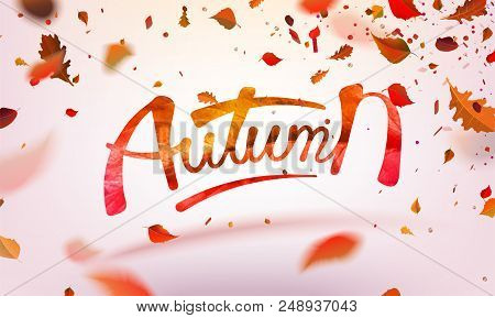 Stock Vector Illustration Happy Autumn Falling Leaves. Autumnal Foliage Fall And Poplar Leaf Flying