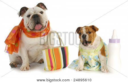 parenting - bulldog mother with puppy and baby bottle poster
